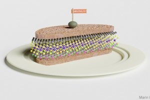 van-der-Waals-sandwich-2